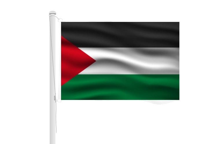 Vlag Palestina